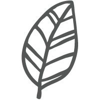 Eco-friendly packagin icon